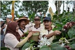 Temu Lapang Petani Kopi dengan Bupati Pati